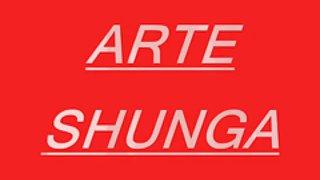 Shunga kunst